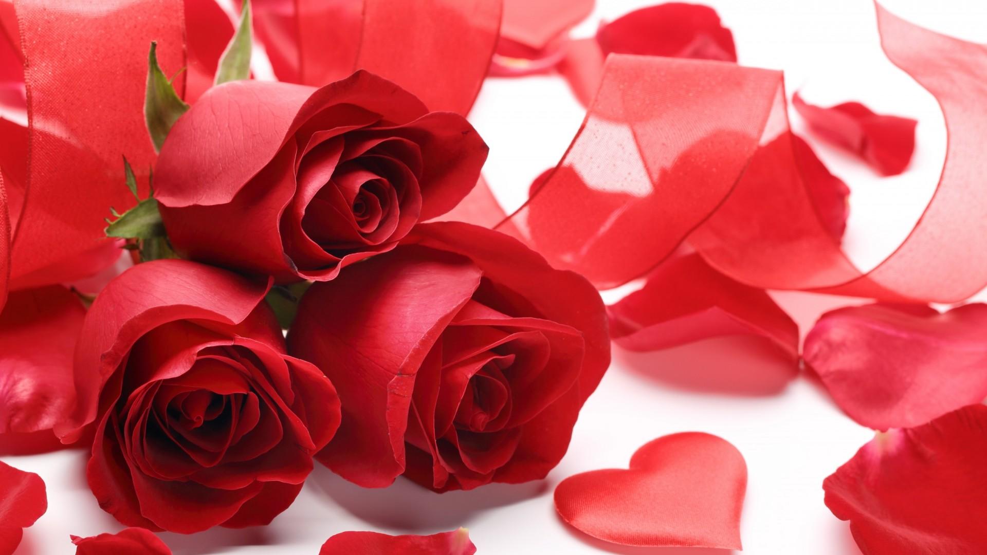 Wednesday 14th February- Valentine's Day